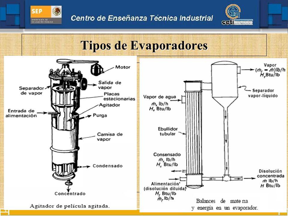 Tipos de Evaporadores De Película Agitada