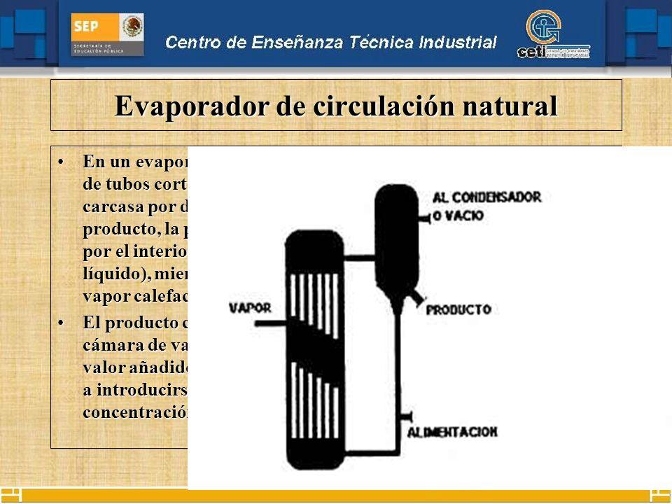 Evaporador de circulación natural