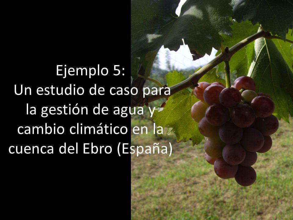 Ejemplo 5: Un estudio de caso para la gestión de agua y cambio climático en la cuenca del Ebro (España)