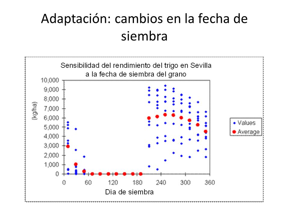 Adaptación: cambios en la fecha de siembra