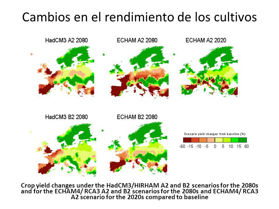 Cambios en el rendimiento de los cultivos