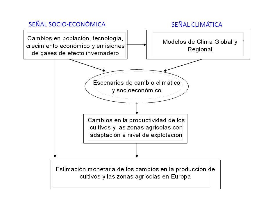 SEÑAL SOCIO-ECONÓMICA
