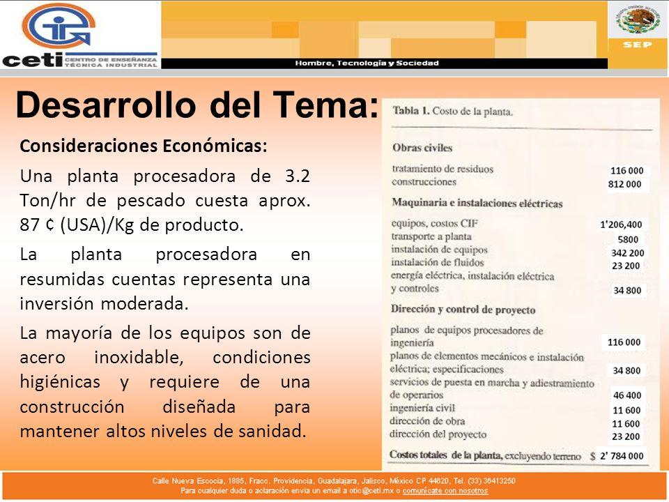 Desarrollo del Tema: Consideraciones Económicas: