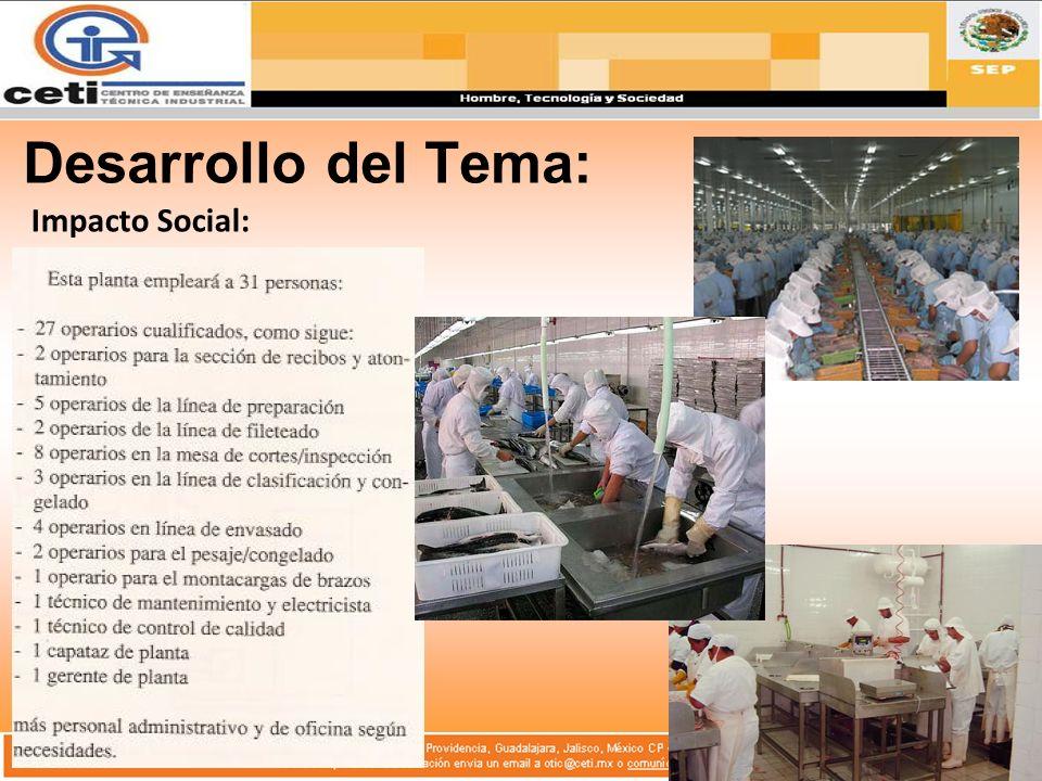 Desarrollo del Tema: Impacto Social: