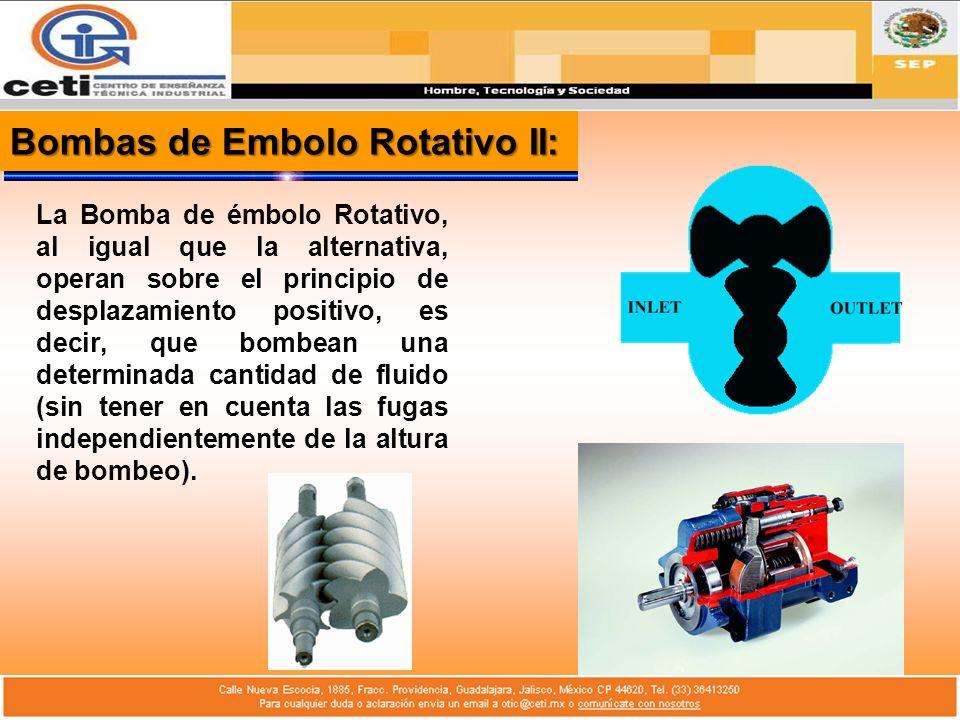 Bombas de Embolo Rotativo II: