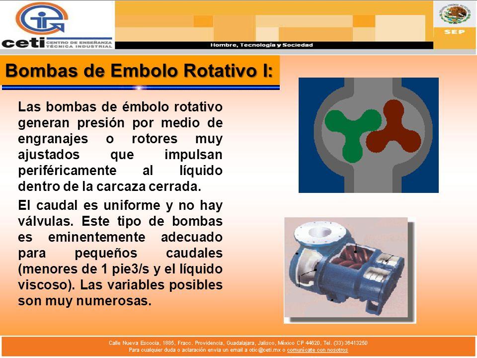 Bombas de Embolo Rotativo I: