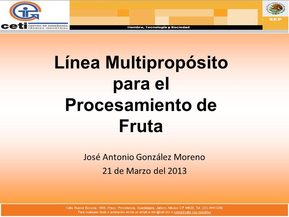Línea Multipropósito para el Procesamiento de Fruta