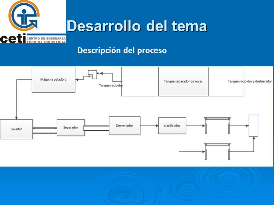 Desarrollo del tema Descripción del proceso