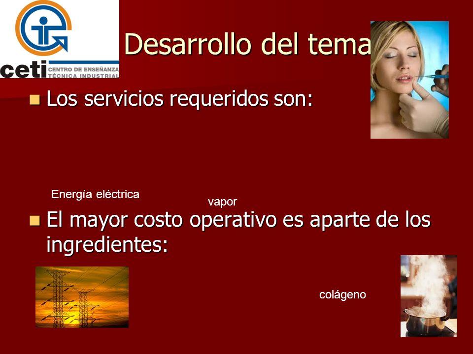 Desarrollo del tema Los servicios requeridos son: