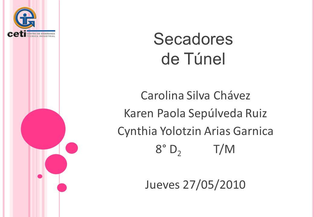 Secadores de Túnel Carolina Silva Chávez Karen Paola Sepúlveda Ruiz
