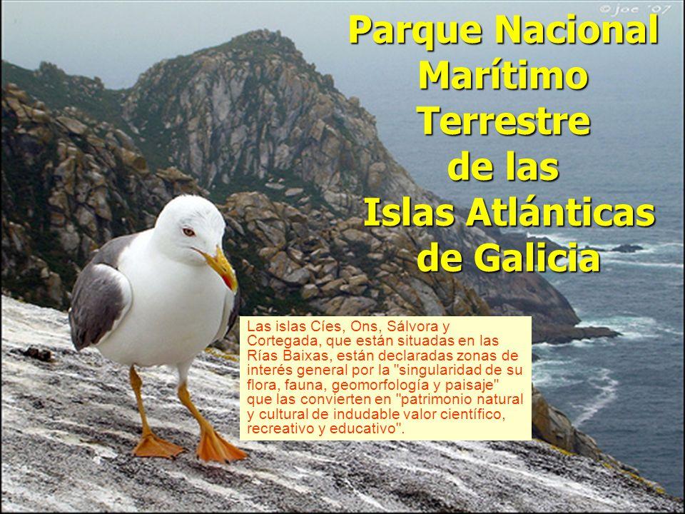 Parque Nacional Marítimo Terrestre de las Islas Atlánticas de Galicia