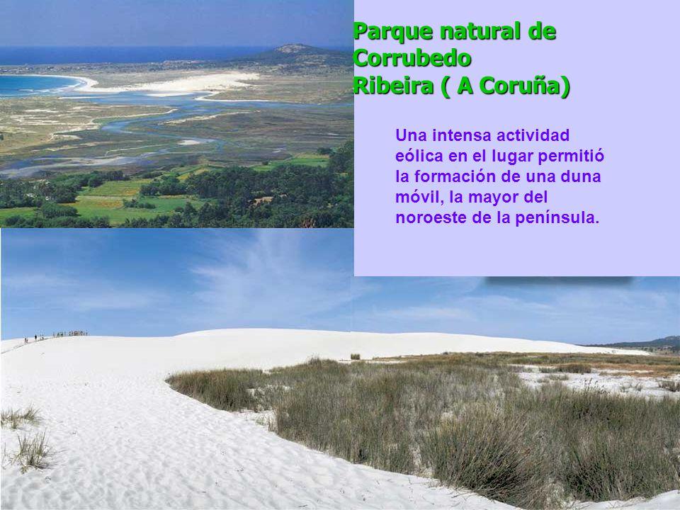 Parque natural de Corrubedo Ribeira ( A Coruña)