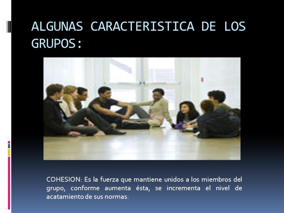 ALGUNAS CARACTERISTICA DE LOS GRUPOS: