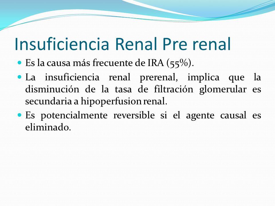 Insuficiencia Renal Pre renal
