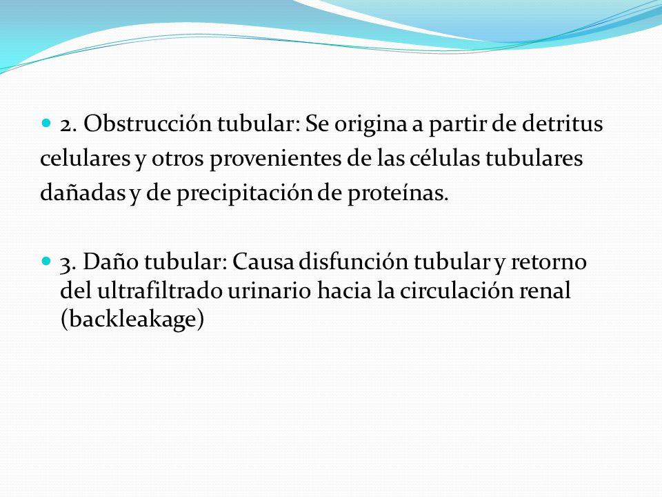 2. Obstrucción tubular: Se origina a partir de detritus