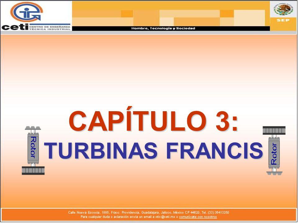 CAPÍTULO 3: TURBINAS FRANCIS
