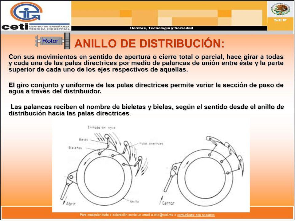 ANILLO DE DISTRIBUCIÓN: