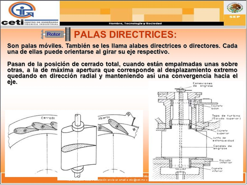 PALAS DIRECTRICES: