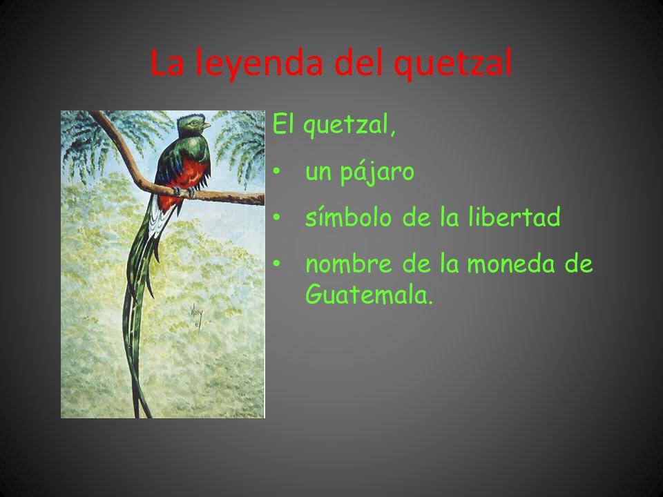 La leyenda del quetzal El quetzal, un pájaro símbolo de la libertad