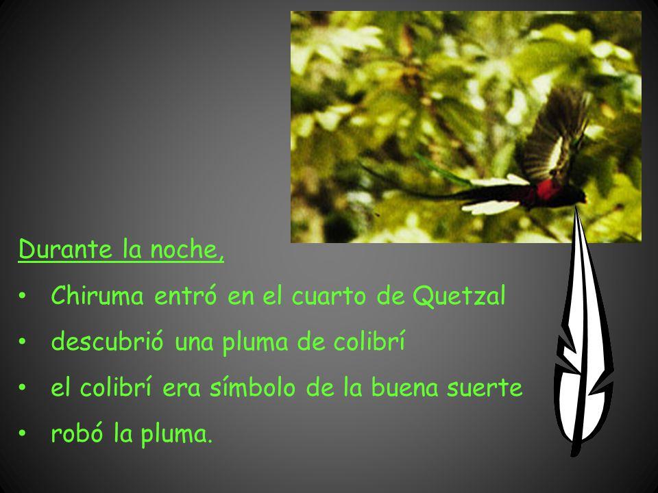Durante la noche, Chiruma entró en el cuarto de Quetzal. descubrió una pluma de colibrí. el colibrí era símbolo de la buena suerte.