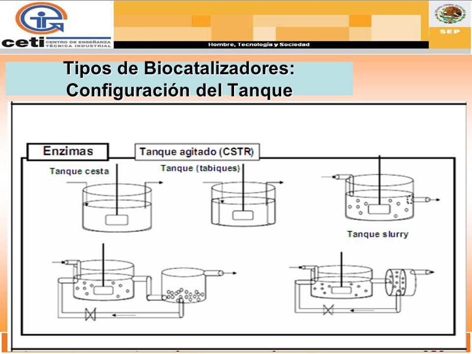 Tipos de Biocatalizadores: Configuración del Tanque