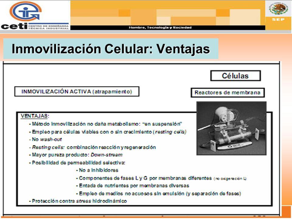 Inmovilización Celular: Ventajas