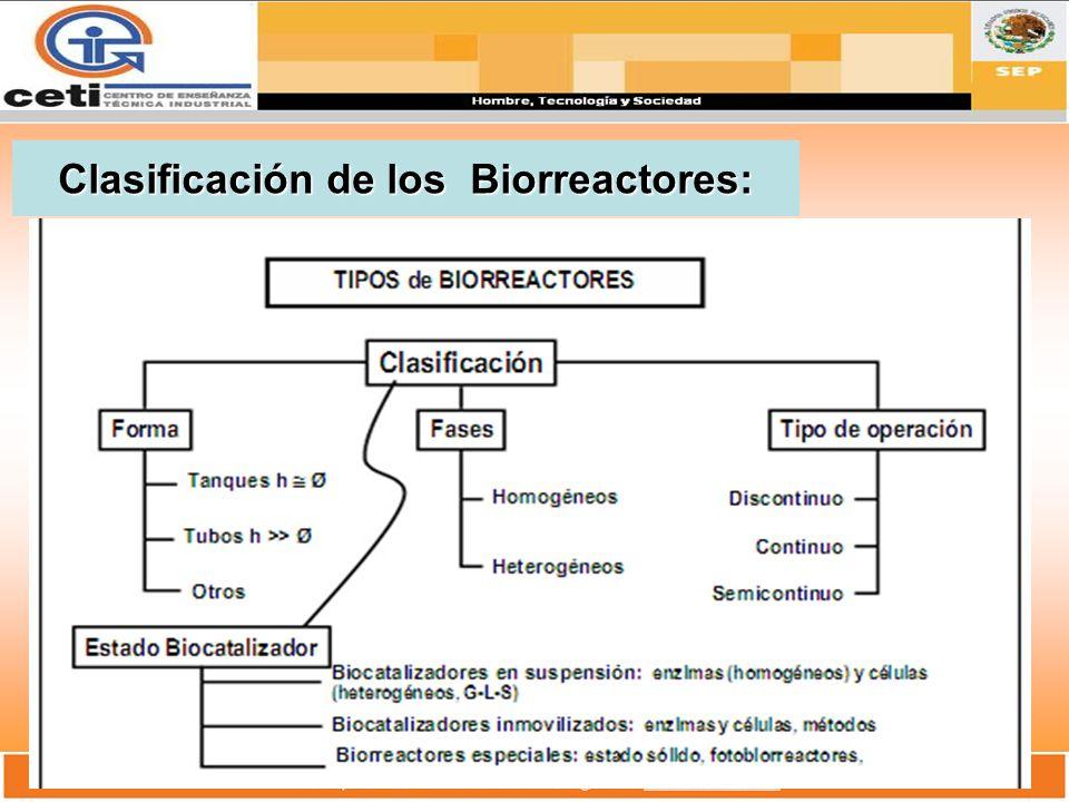 Clasificación de los Biorreactores: