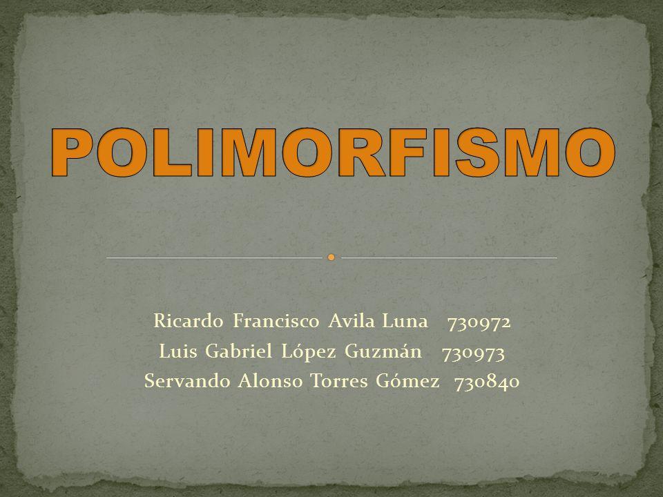 POLIMORFISMO Ricardo Francisco Avila Luna 730972