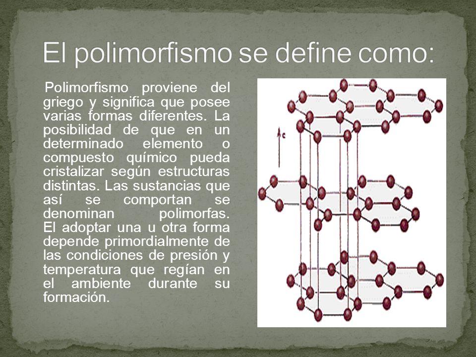 El polimorfismo se define como: