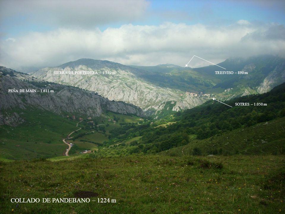 COLLADO DE PANDEBANO – 1224 m