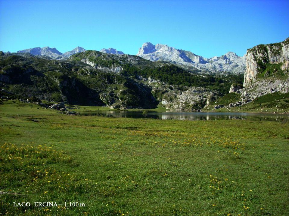 LAGO ERCINA – 1.100 m