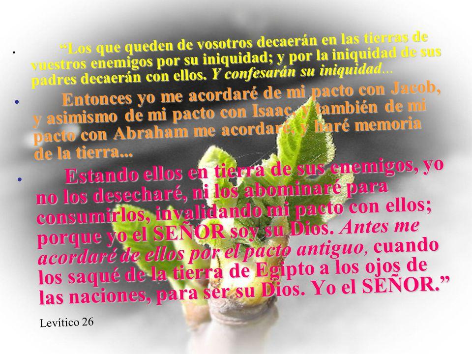 Los que queden de vosotros decaerán en las tierras de vuestros enemigos por su iniquidad; y por la iniquidad de sus padres decaerán con ellos. Y confesarán su iniquidad...