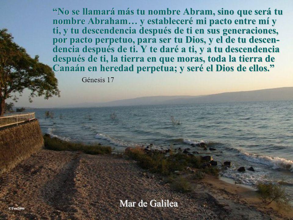 No se llamará más tu nombre Abram, sino que será tu nombre Abraham… y estableceré mi pacto entre mí y ti, y tu descendencia después de ti en sus generaciones, por pacto perpetuo, para ser tu Dios, y el de tu descen-dencia después de ti. Y te daré a ti, y a tu descendencia después de ti, la tierra en que moras, toda la tierra de Canaán en heredad perpetua; y seré el Dios de ellos.