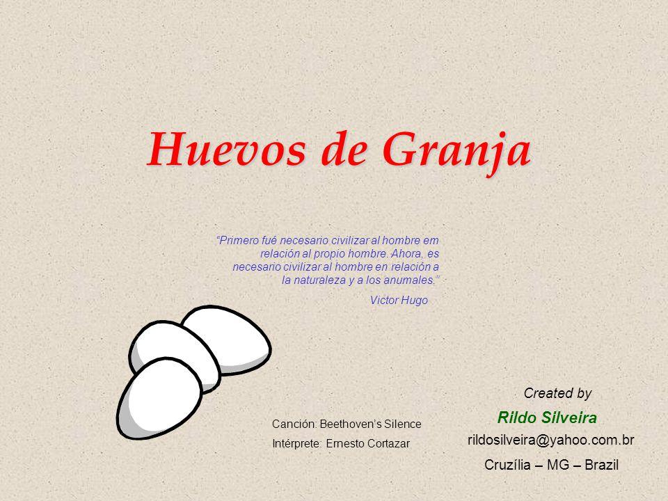 Huevos de Granja Rildo Silveira Created by rildosilveira@yahoo.com.br