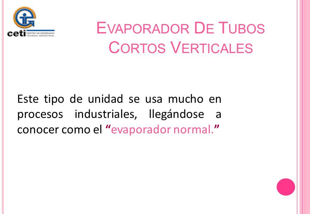 Evaporador De Tubos Cortos Verticales
