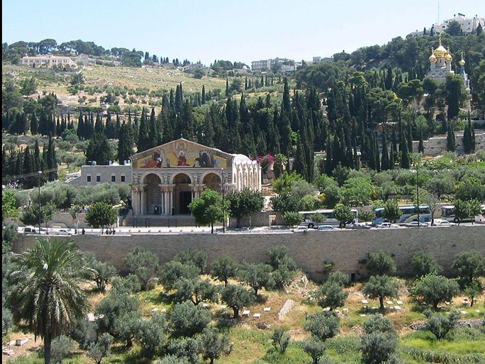 Los Lugares Santos y los Santuarios son los sitios más visitados en el Mundo Entero.