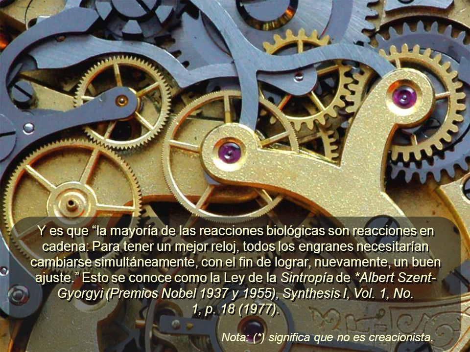 Y es que la mayoría de las reacciones biológicas son reacciones en cadena: Para tener un mejor reloj, todos los engranes necesitarían cambiarse simultáneamente, con el fin de lograr, nuevamente, un buen ajuste. Esto se conoce como la Ley de la Sintropía de *Albert Szent- Gyorgyi (Premios Nobel 1937 y 1955), Synthesis I, Vol. 1, No. 1, p. 18 (1977).