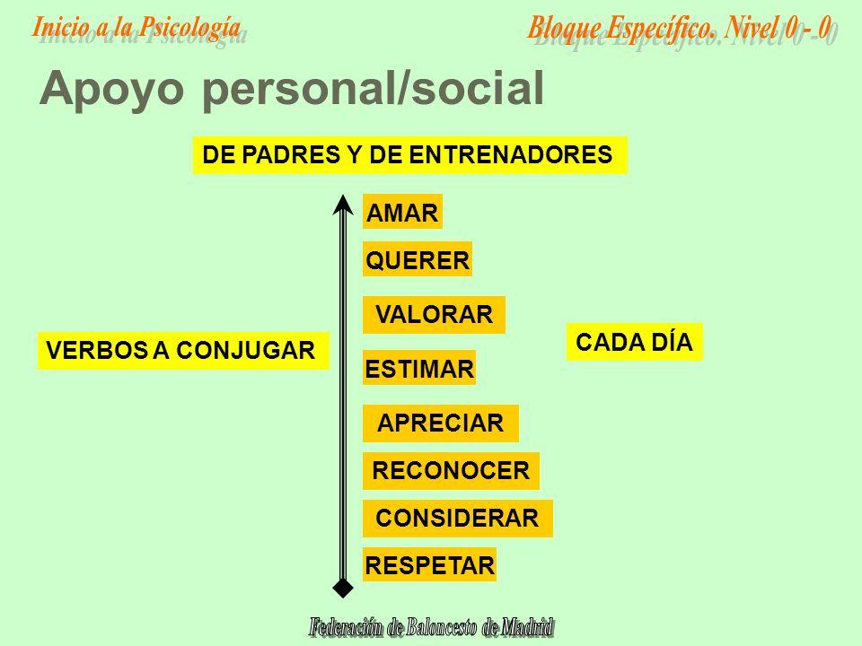 Apoyo personal/social