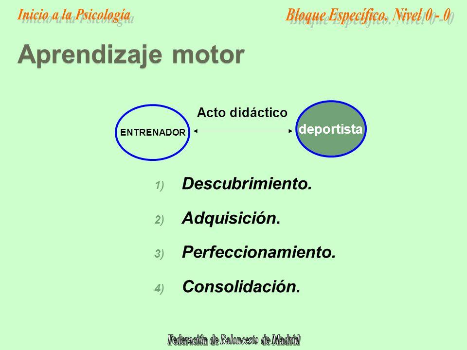 Aprendizaje motor Descubrimiento. Adquisición. Perfeccionamiento.