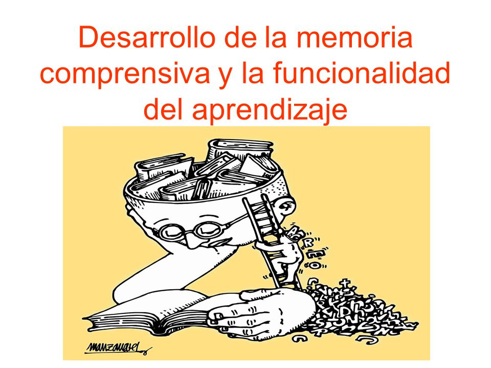 Desarrollo de la memoria comprensiva y la funcionalidad del aprendizaje