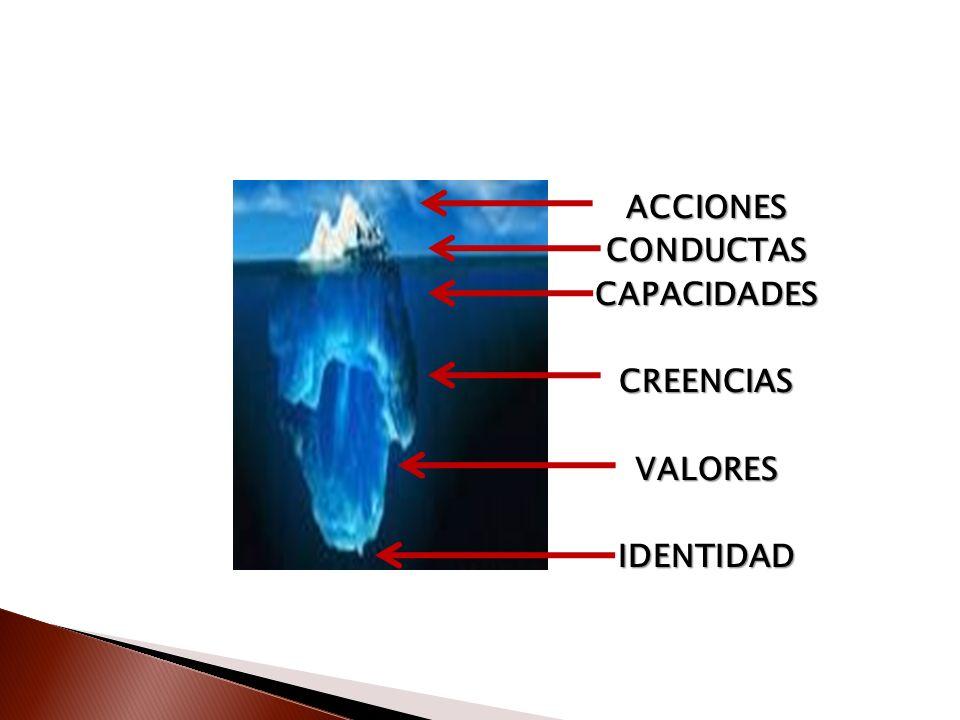 ACCIONES CONDUCTAS CAPACIDADES CREENCIAS VALORES IDENTIDAD