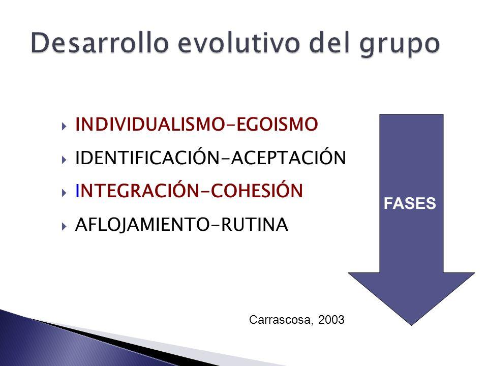 Desarrollo evolutivo del grupo