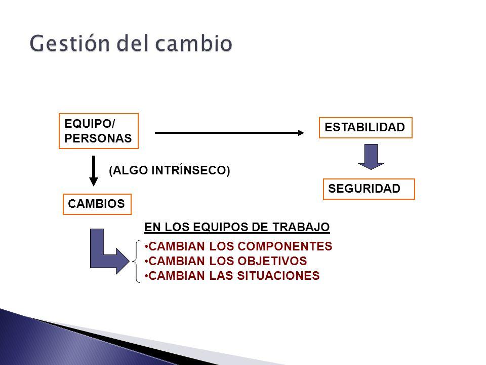 Gestión del cambio EQUIPO/ ESTABILIDAD PERSONAS (ALGO INTRÍNSECO)