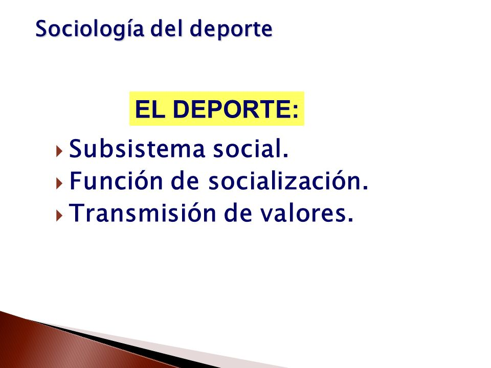Función de socialización. Transmisión de valores.