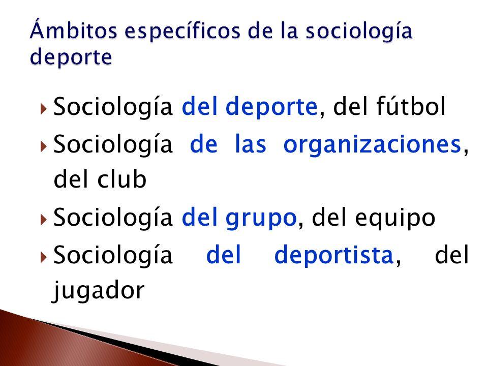 Ámbitos específicos de la sociología deporte
