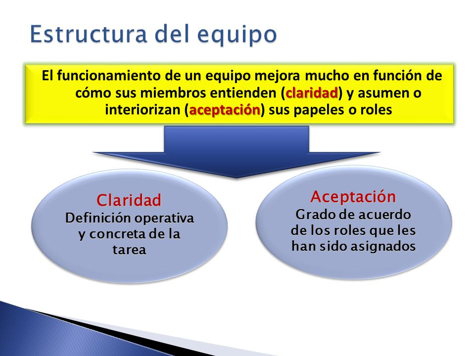 Estructura del equipo