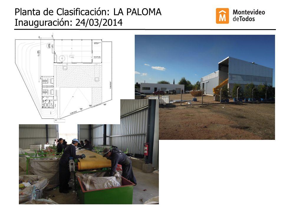 Planta de Clasificación: LA PALOMA