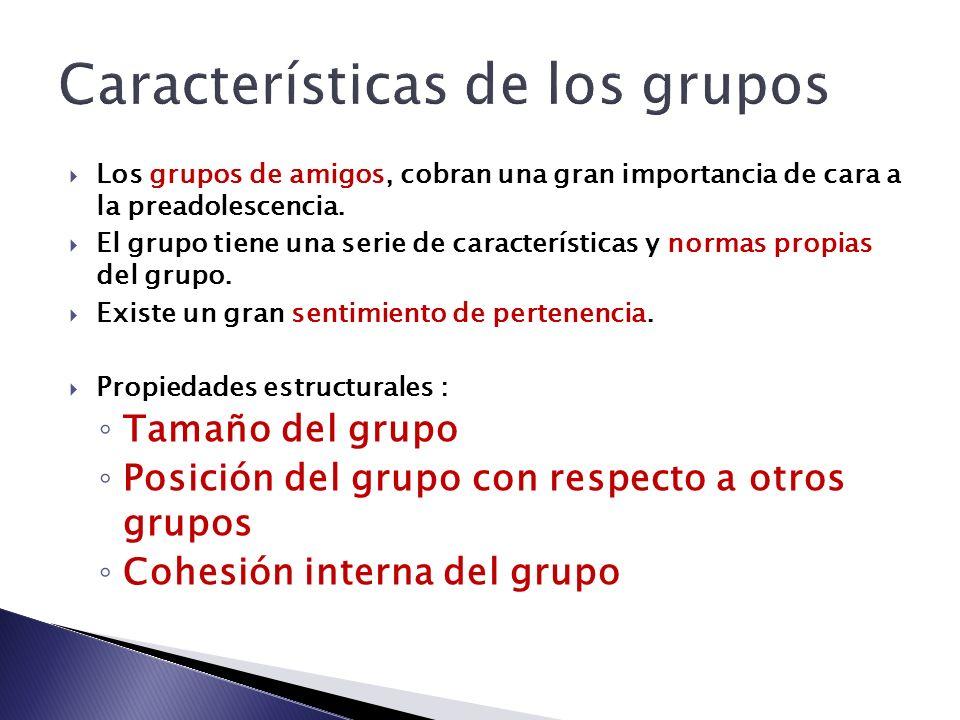 Características de los grupos