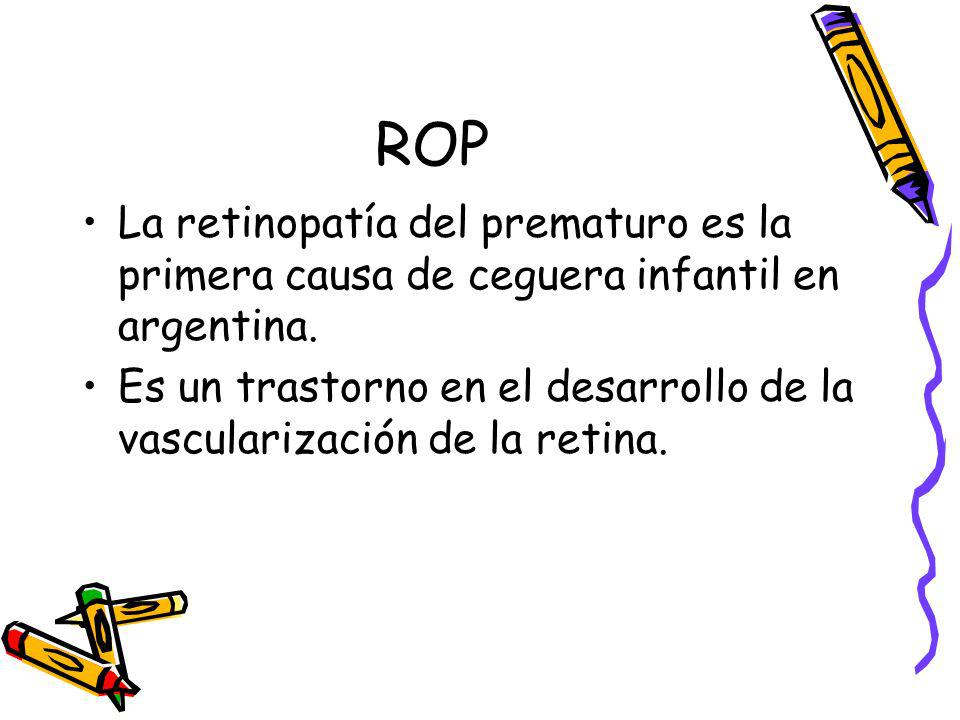 ROP La retinopatía del prematuro es la primera causa de ceguera infantil en argentina.