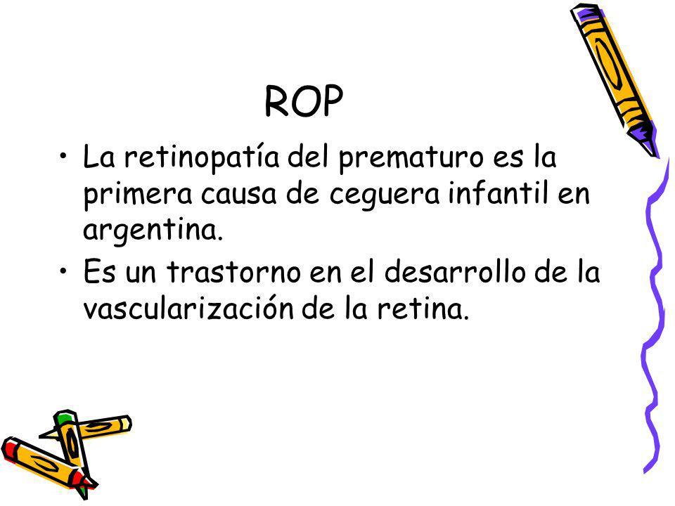 ROPLa retinopatía del prematuro es la primera causa de ceguera infantil en argentina.